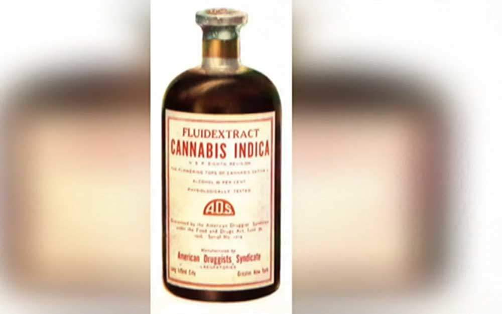 Cannabis-Fluid-Extract